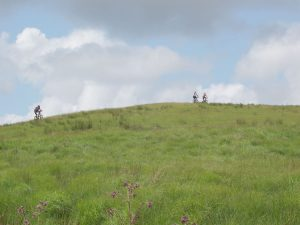 A trio of bikers tackling a steep ascent up a hill near Abergwesyn