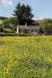 Maes y Gwaelod Guesthouse, Llanwrtyd