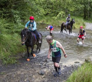 running, sport, trail racing, horse race, rivers, streams