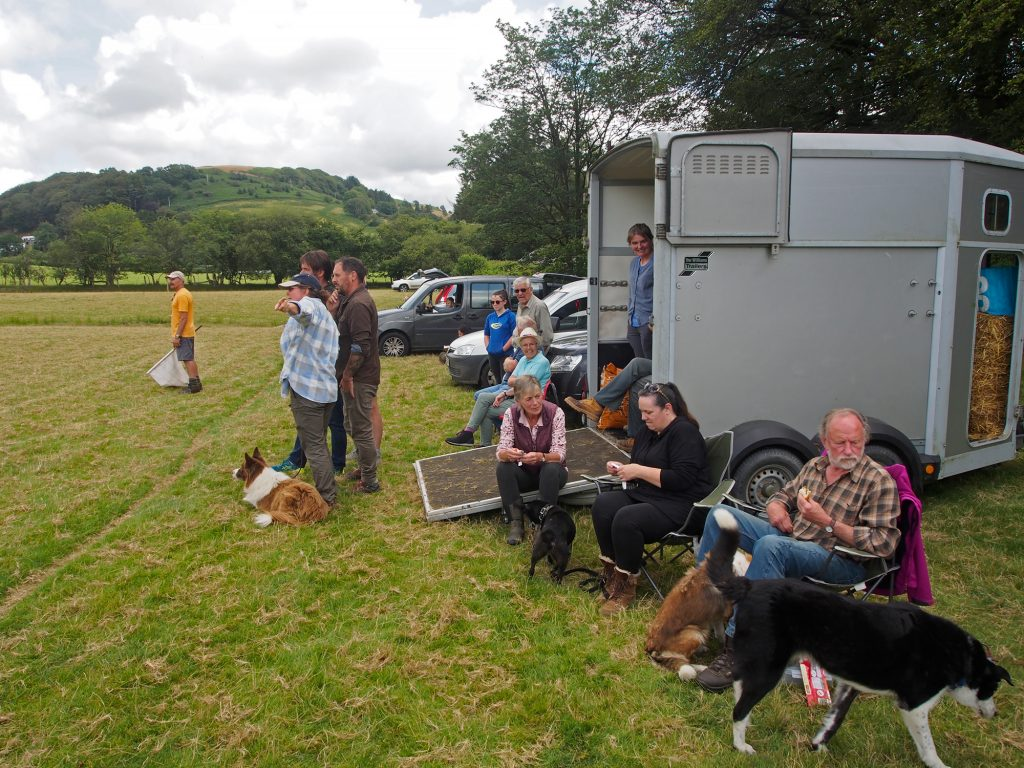 Showing spectators at the Abergwesyn Sheep Dog Trials