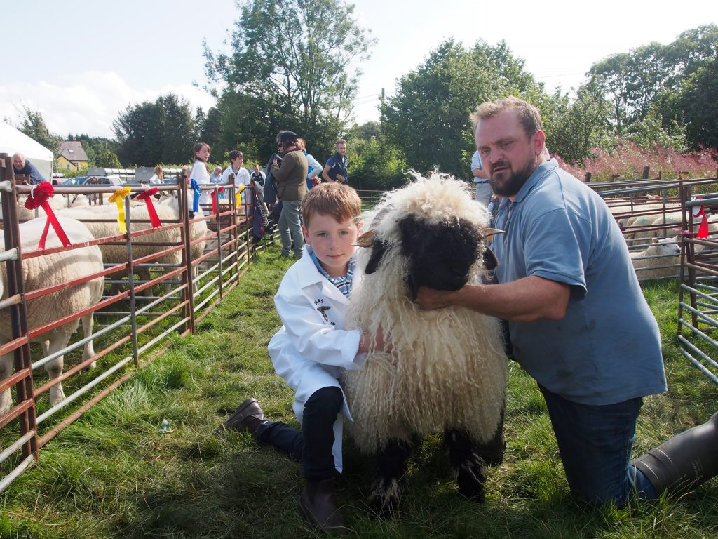 Llanwrtyd Wells Show. Local farmer displaying long-haired sheep.