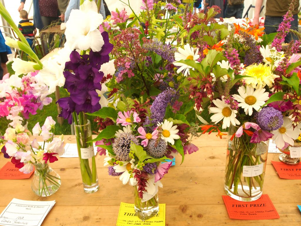 There is a floral section at Llanwrtyd Wells show for cut garden flowers.