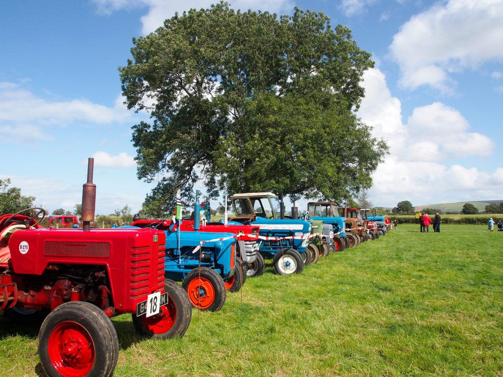 Vintage tractors are displayed at the Llanwrtyd Wells show.