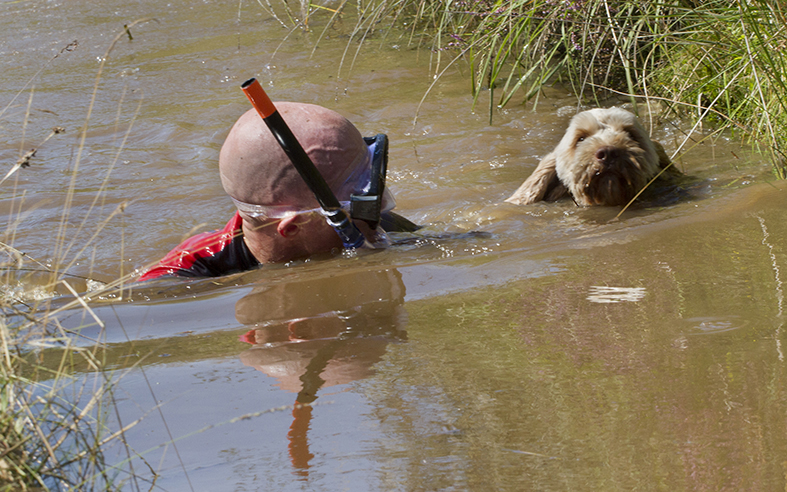 Competitors have to complete a 60 yard bog snorkel at the end of the Bog Triathlon