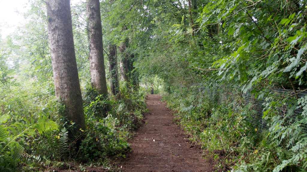Showing the new nature trail at Dolwen Field, Llanwrtyd Wells