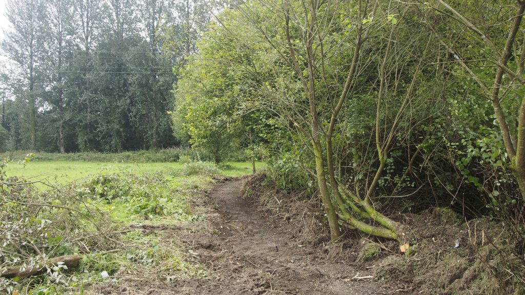 The newly cut curved path in the Dolwen Field.