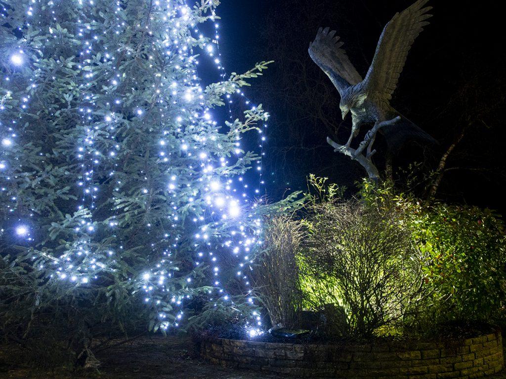 Christmas lights in Llanwrtyd 2020
